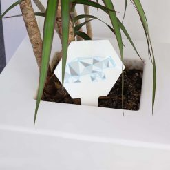 Geometric Bear Small Hexagon Sign IN PLANTPOT