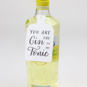You Are The Gin To My Tonic Hanging Decoration